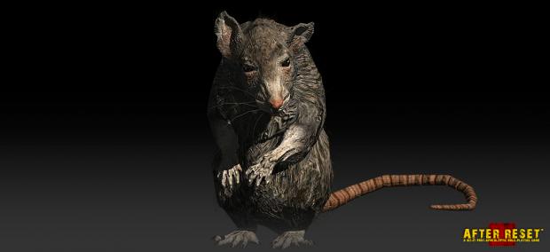 Rats. Rats Never Change. #2