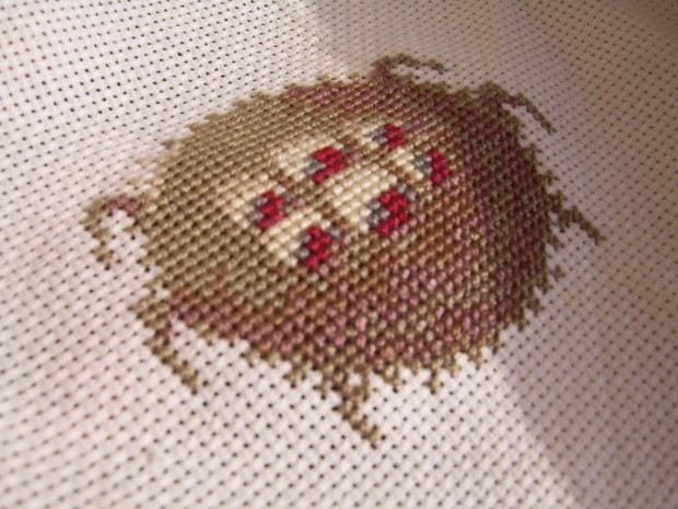 Cross-stitched Zo