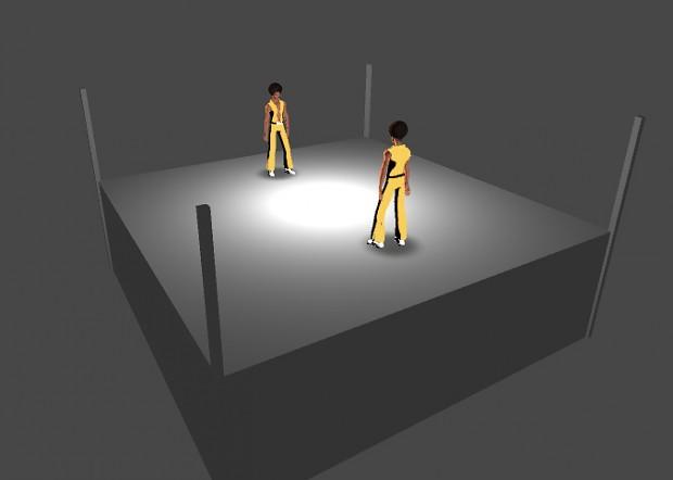 Boxing ring prototype