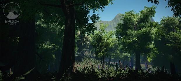 Faesholt Forest
