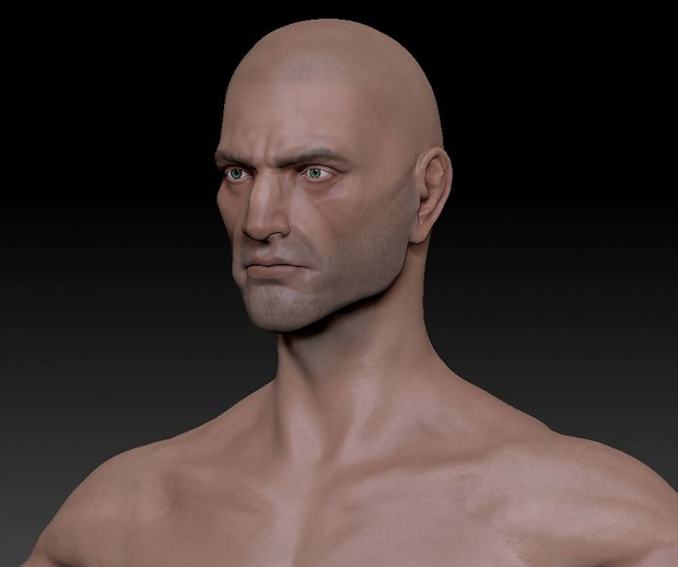 Male Adult Human Template (Head)