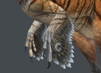 Austroraptor Render - Body Detail