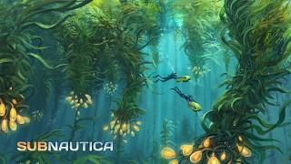 Subnautica Concept Art: Kelp Forest