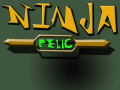 Ninja Relic