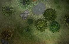 New vegetation