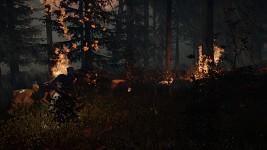 Spreading Fire
