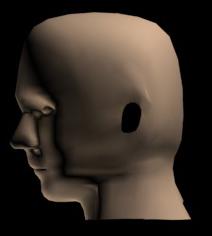Dr Grants Head