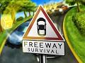 Freeway Survival