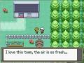 Pokemon Amethyst