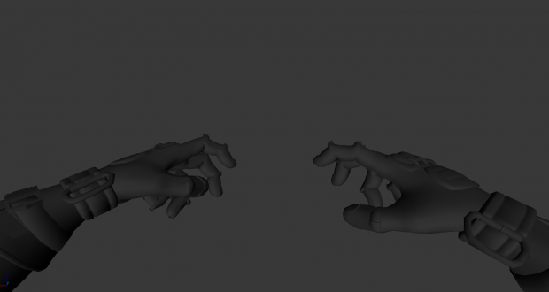 Hand Rig