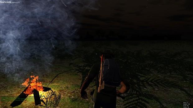 Campfires at night