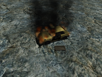 Car damage and Burning features
