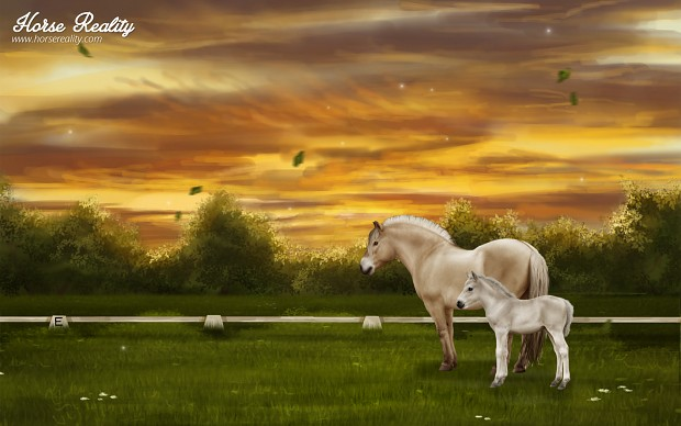 Fjord Horse Wallpaper