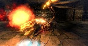 Angry Bone Dragon !