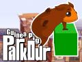 Guinea Pig Parkour