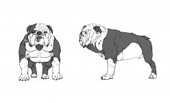 Blood the Bulldog normal form