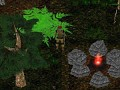 Evidyon - No Man's Land MMORPG