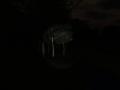 Slender: Strange Forest