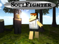 SoulFighter - Sandbox RPG