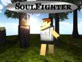 SoulFighter - Sandbox RPG