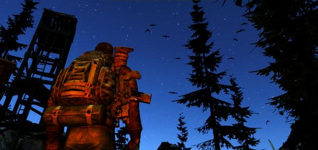 Stars in the sky (At Night) in The Living Z7