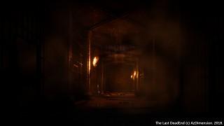 Catacombs location