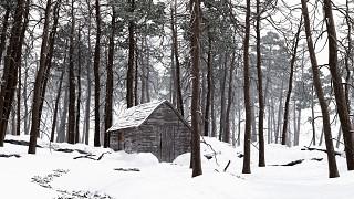 HighRes WIP Snow