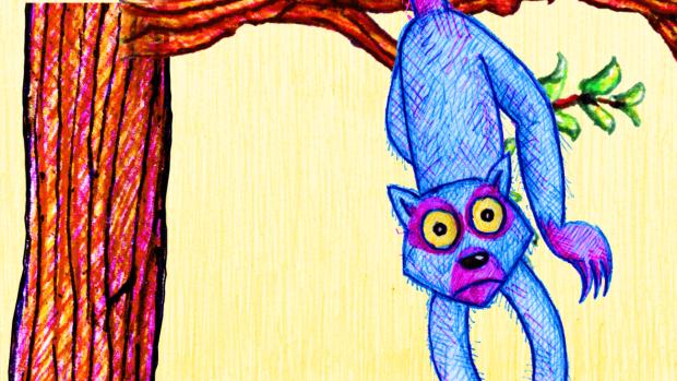 Lemur on a Tree