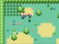 Pokemon Dungeon Quest