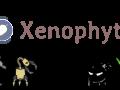 Xenophyte
