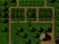 Fight of Hero