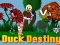 Duck Destiny