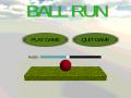 Ball Run