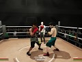 Project Boxing Devlog #16 [Boxing Game]