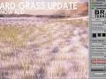 Simple Billboard Cutoff + Snow Grass [WIP]