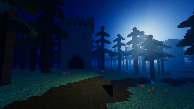 Fir Forest At Night