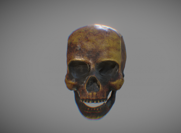 Making a texturized human skull