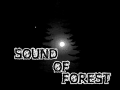 Sound of Forest