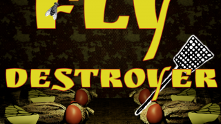 Fly Destroyer (VR)