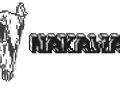Nakawak