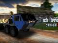 Truck Driver Sim 17