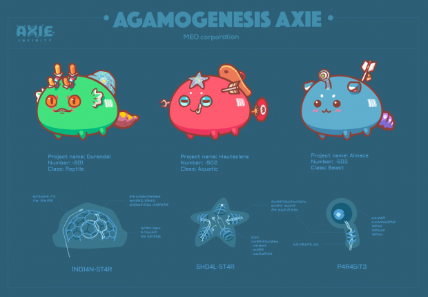 Auction Axie reveal 1