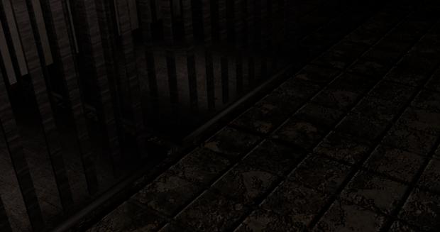 Basement Cages 1