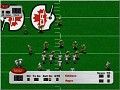 CFL Football '99