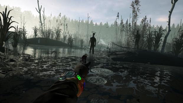 Into the Radius - Milestone 6 - Swamp Encounter