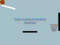 Super Lonely Basketball Simulator