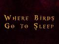 Where Birds Go to Sleep
