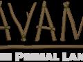Avani: The Primal Land