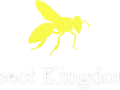 Insect Kingdoms