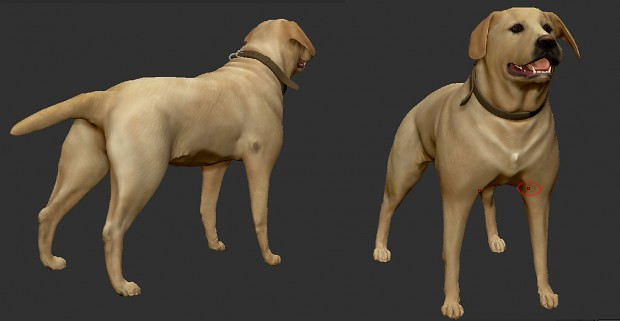 Dog (high-poly model)